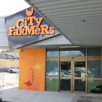 City Farmers Yokine